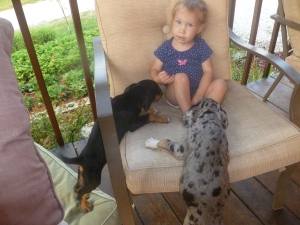 Ruthie isn't sure what to think of the puppy lovin'.